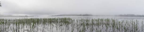 vass i dimman tidigt på morgonen på den sjön gaxsjon, swede - ferry lake sweden bildbanksfoton och bilder