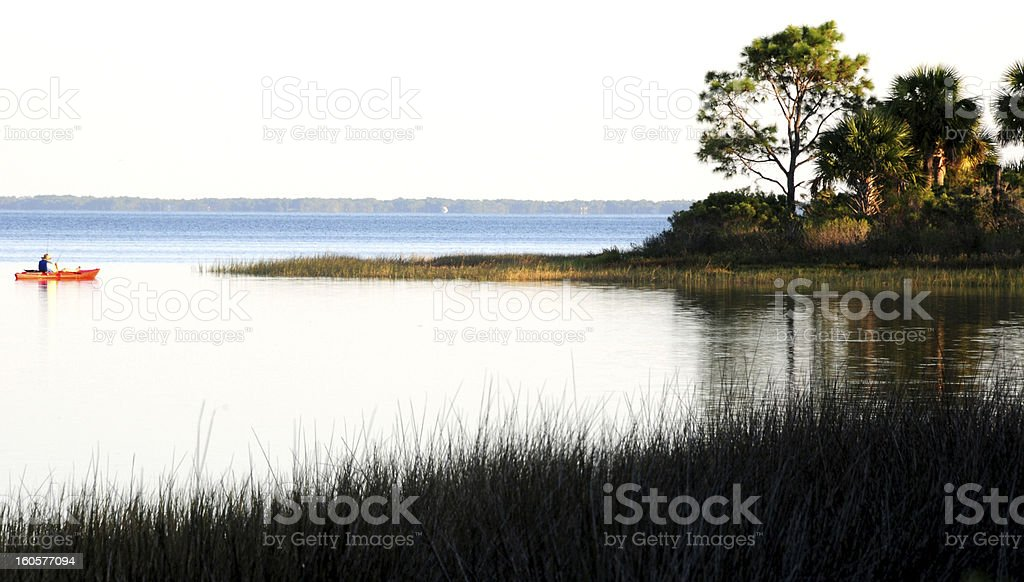 Reeds on lake edge and kayaker in Florida stock photo