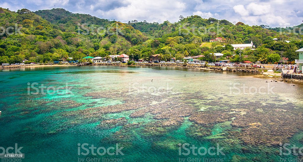 A reef and bay with forest behind, at Roatan, Honduras stock photo