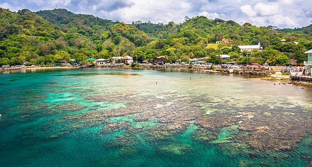 A reef and bay with forest behind, at Roatan, Honduras Picture taken in Roatan, Honduras honduras stock pictures, royalty-free photos & images