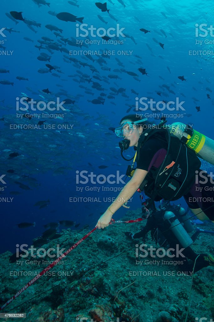 Reef Hook, Palau - Micronesia stock photo