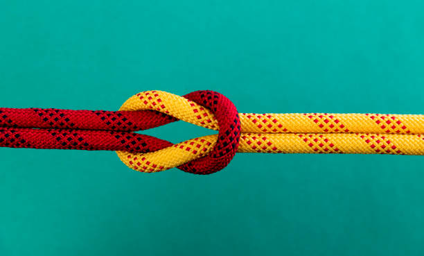 Reef knot on green background Reef knot on green background. symmetry stock pictures, royalty-free photos & images