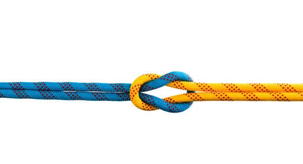 Reef knot on white background stock photo