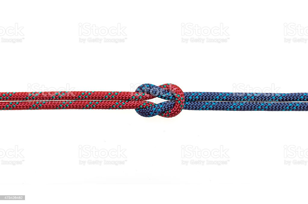 reef knot stock photo