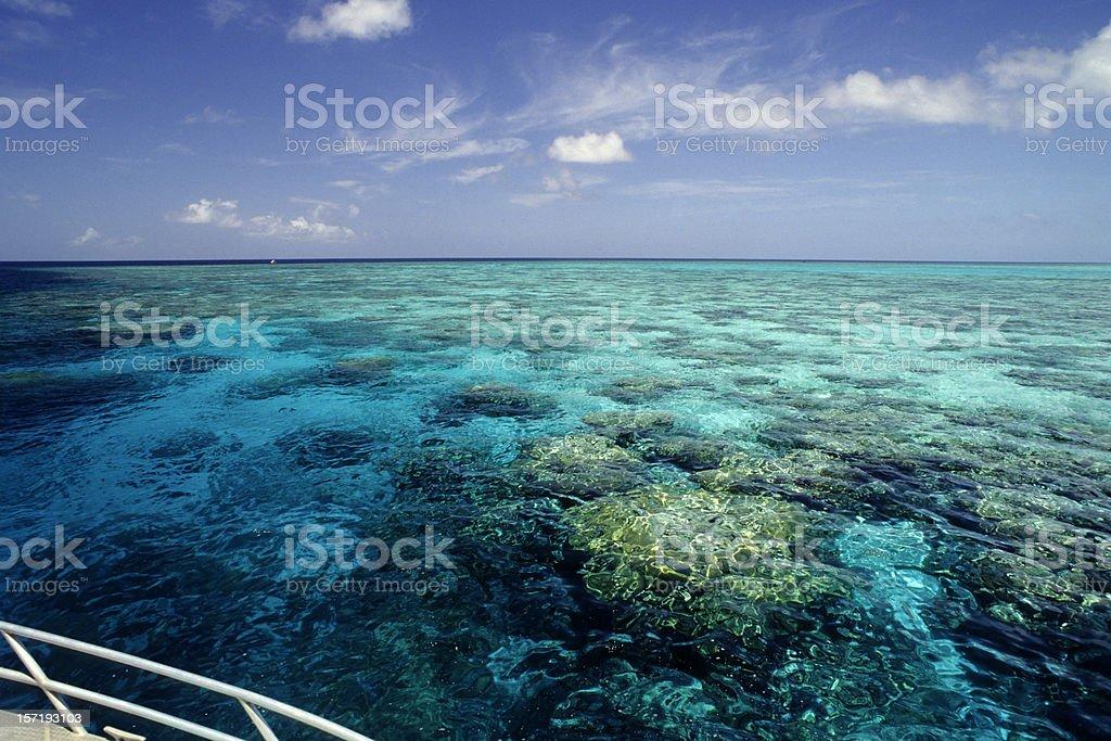 Reef Ride stock photo