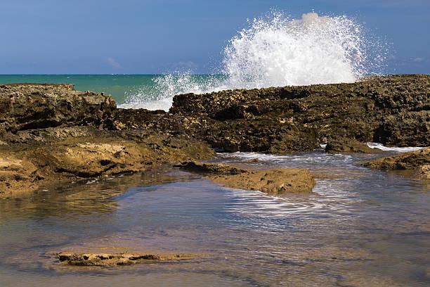 Reefs of Pontal do Coruripe Beach - Alagoas - Brazil – Foto