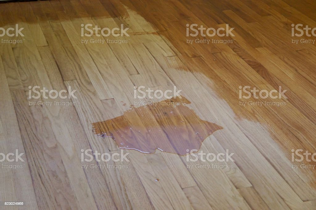 Refinishing a Hardwood Floor stock photo