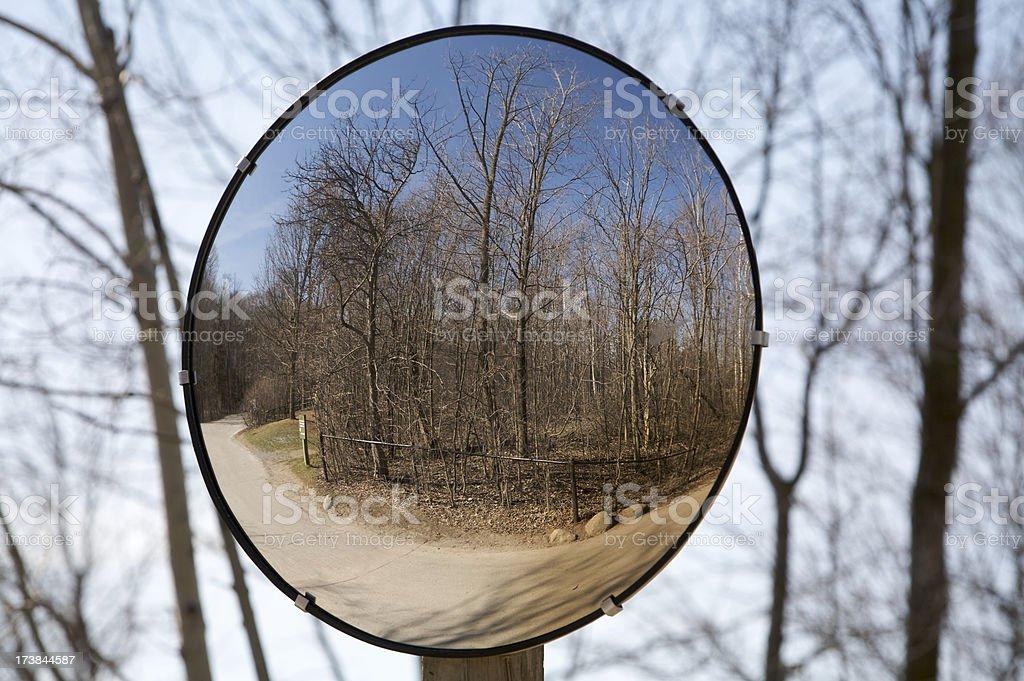 Reflected Path stock photo