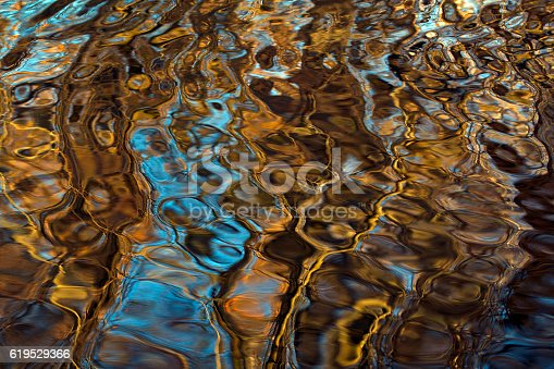 Reflected Tree on Water Surface  from sweden nature