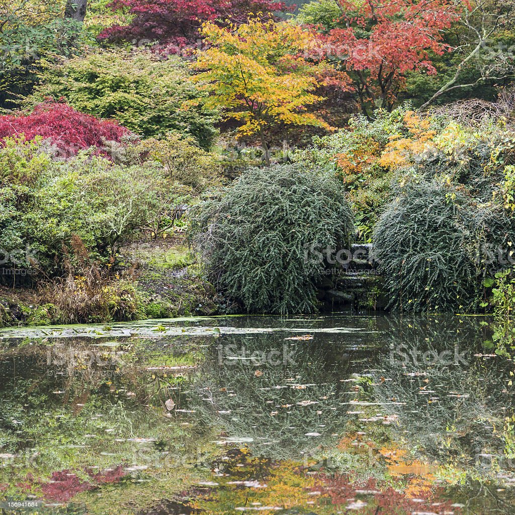 Reflecting Autumn stock photo