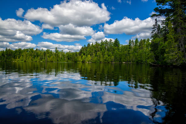 reflecting clouds and forest, sawbill lake, bwcaw stock photo