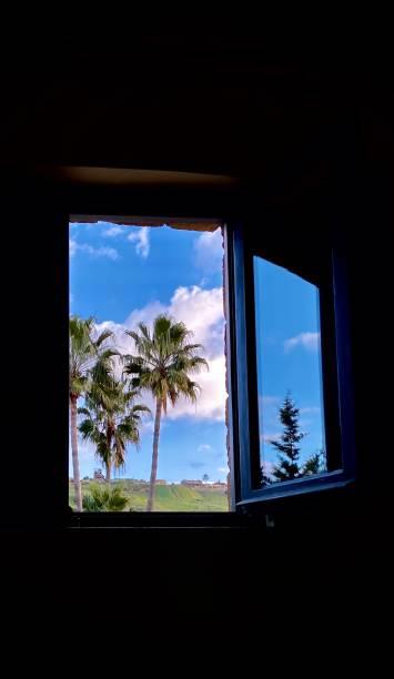 Reflektion des blauen Himmels und Baum im Fenster, Sizilien, Italien – Foto
