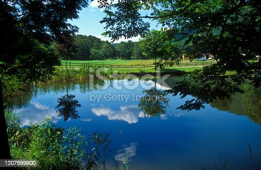 Reflection of clouds in a pond in Historic village of Grafton, Vermont, USA