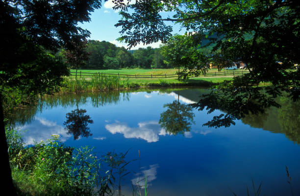 Reflection of clouds in a pond Reflection of clouds in a pond in Historic village of Grafton, Vermont, USA pond stock pictures, royalty-free photos & images