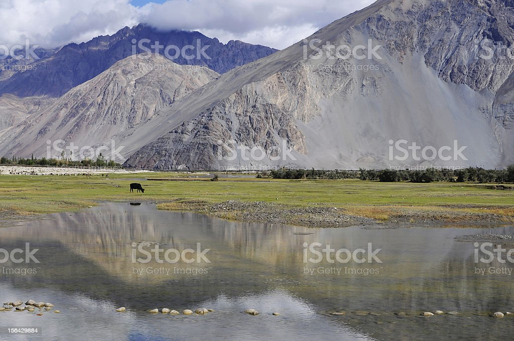 Reflection of Lake royalty-free stock photo