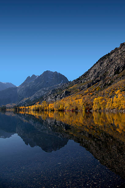 Reflection of Mountains and Aspens stock photo