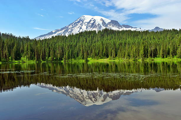 Reflection of Mt.Rainier Reflection Lake with Mt.Rainier in the background.  reflection lake stock pictures, royalty-free photos & images