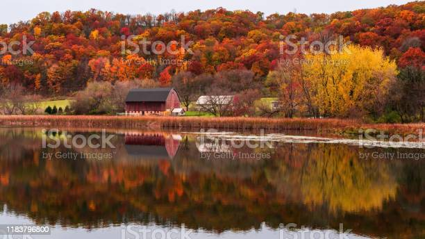 Photo of reflection of red barn during fall in southern minnesota