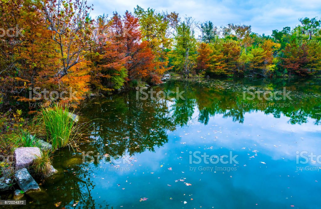 reflection of Tall Trees along Reflecting water around Red Bud Isle Autumn Nature Spot stock photo