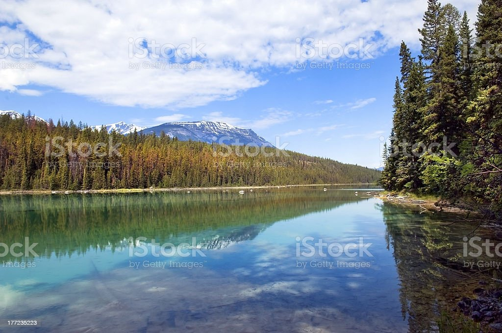 reflection of the nature royalty-free stock photo