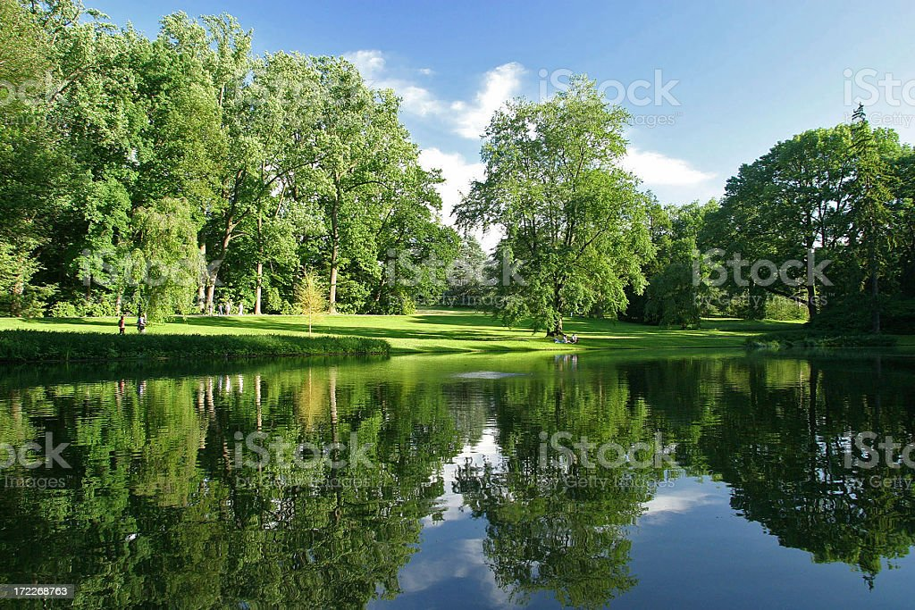Reflection Of Trees Along Lake royalty-free stock photo