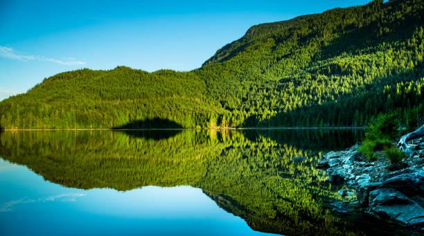 Reflection of Trees and Sky at Rainy Day Lake stock photo