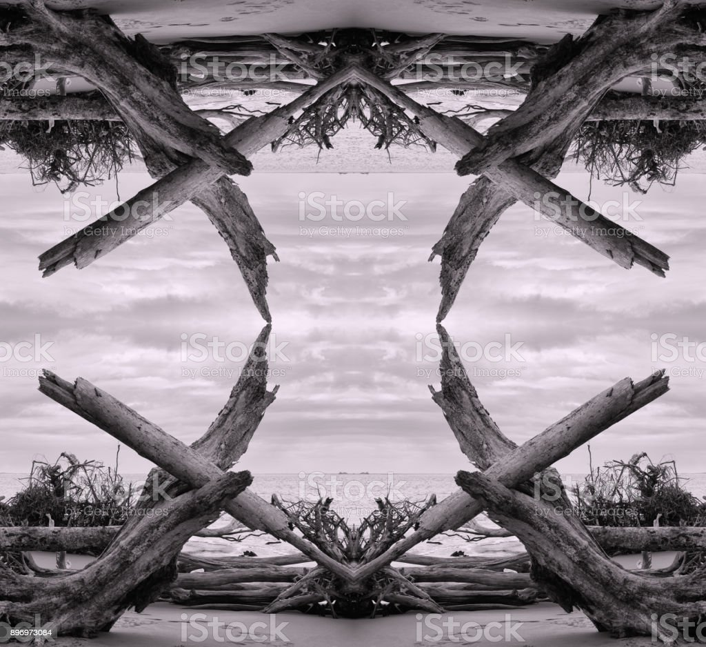 Reflection symmetry image of driftwood on a beach. stock photo