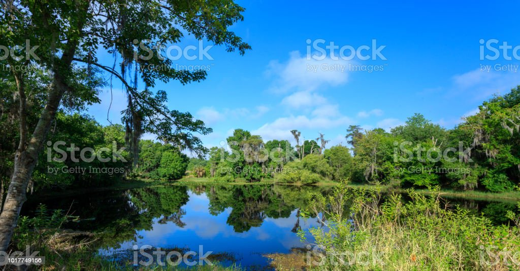 Reflection  View of the Lake and the Woods stock photo