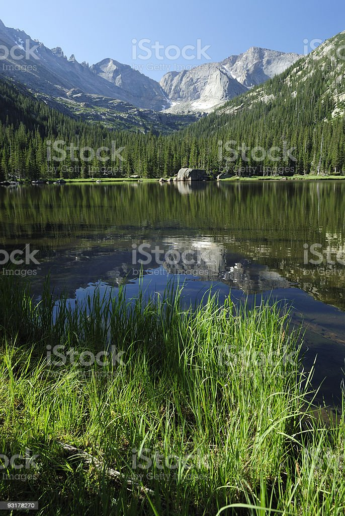 Reflections at a forest lake in Colorado Rocky Mountains royalty-free stock photo