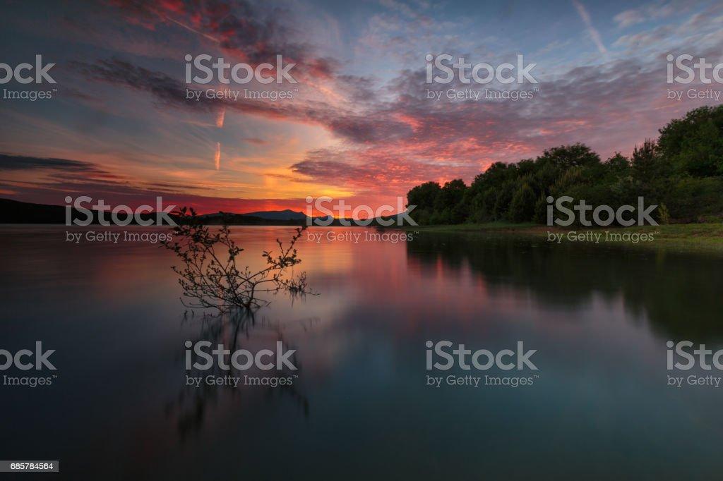 Reflections at the lake royalty-free stock photo
