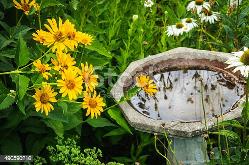 Yellow and white daisies are clustered around a stone birdbath reflecting other garden flowers.