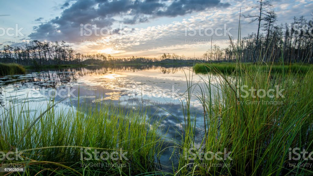 reflections in the lake water at sunrise stock photo