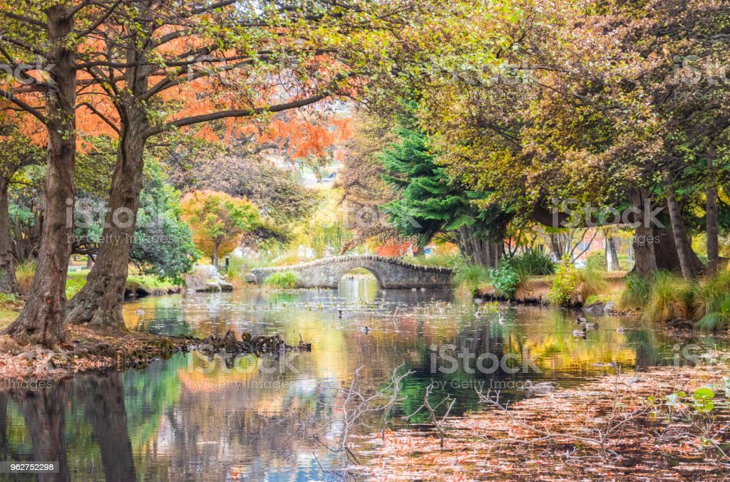 Reflections in the park - foto stock
