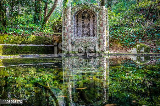 Reflections in the water, pena park, sintra, Portugal
