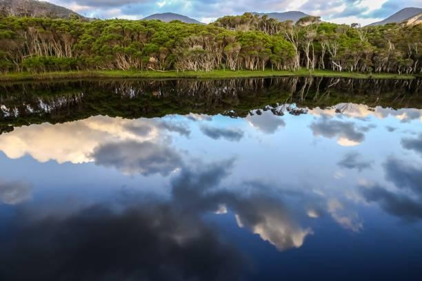 reflexionen in tidal river - own wilson stock-fotos und bilder