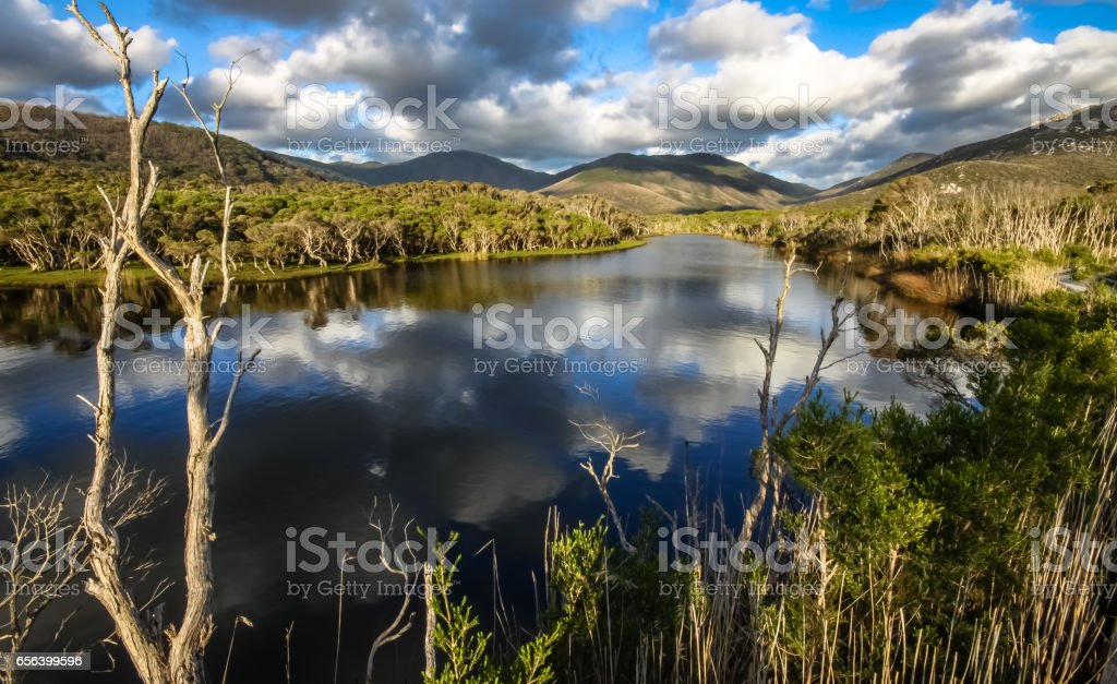Reflections in Tidal River stock photo