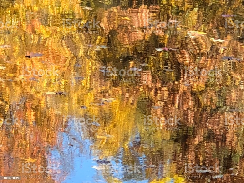 Reflections of Fall in Central Park stock photo