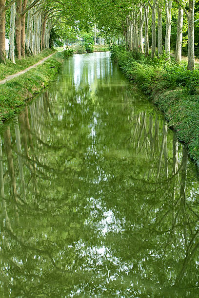 Reflections of tree on the Canal du Midi stock photo