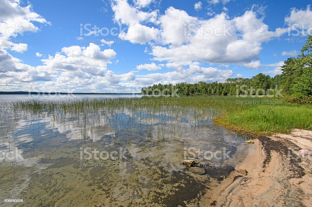 Reflections on a Sandy Shore in the Wilds stock photo