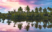 The backwaters of Kerala are a sight to behold. This picture was taken at a place called Thanni during sunset.