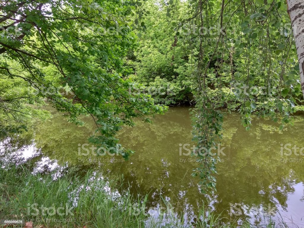 Reflections foto stock royalty-free