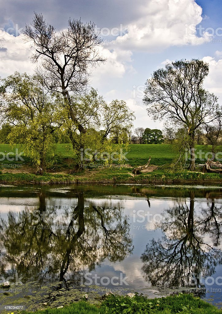 Reflections, river Ribble stock photo