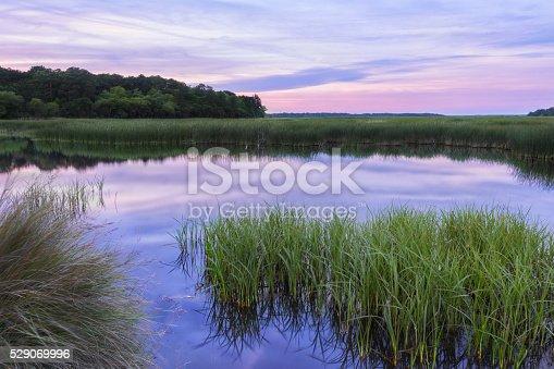 istock Reflective South Carolina Lowcountry Marsh Scene Sunset ACE Basin 529069996