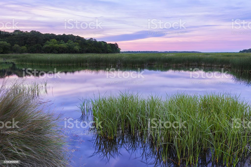 Reflective South Carolina Lowcountry Marsh Scene Sunset ACE Basin stock photo