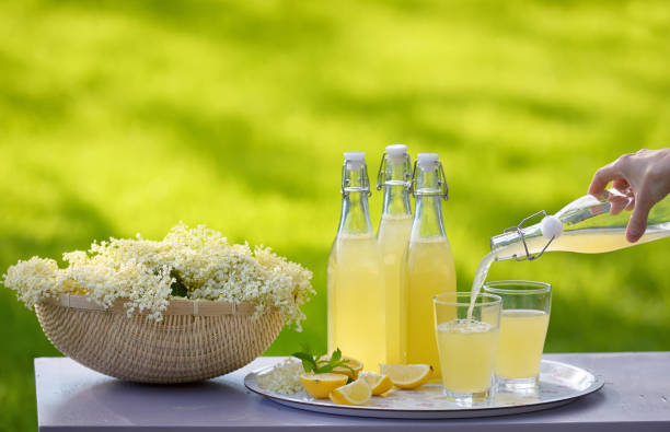 Refreshing springtime elderflower cordial in garden stock photo