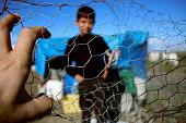 Refugee kid behind wire fence, syria, refugee camp