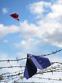 refugee passport hangs in barbed wire, an European passport flie