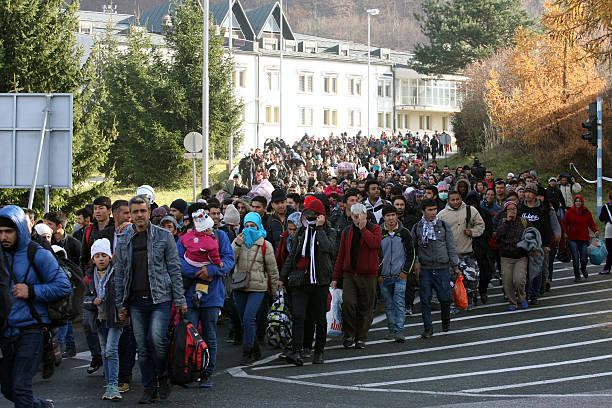Refugees at slovenia austria border november 19 2015 picture id497982452?b=1&k=6&m=497982452&s=612x612&w=0&h=zs5sssqcuqtld3pwf6rm2i1xk9ysbmlp4sxrvrogrdy=