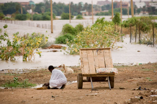 refugees in sudan - sudan stock photos and pictures