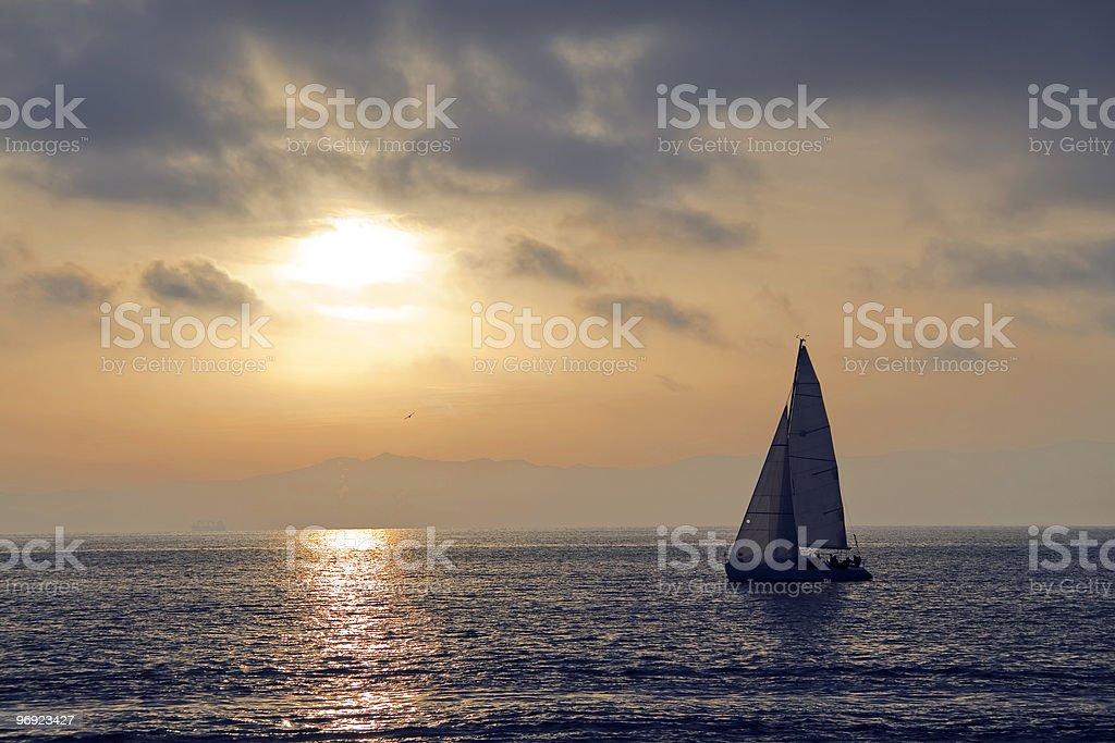 regatta at sunset royalty-free stock photo